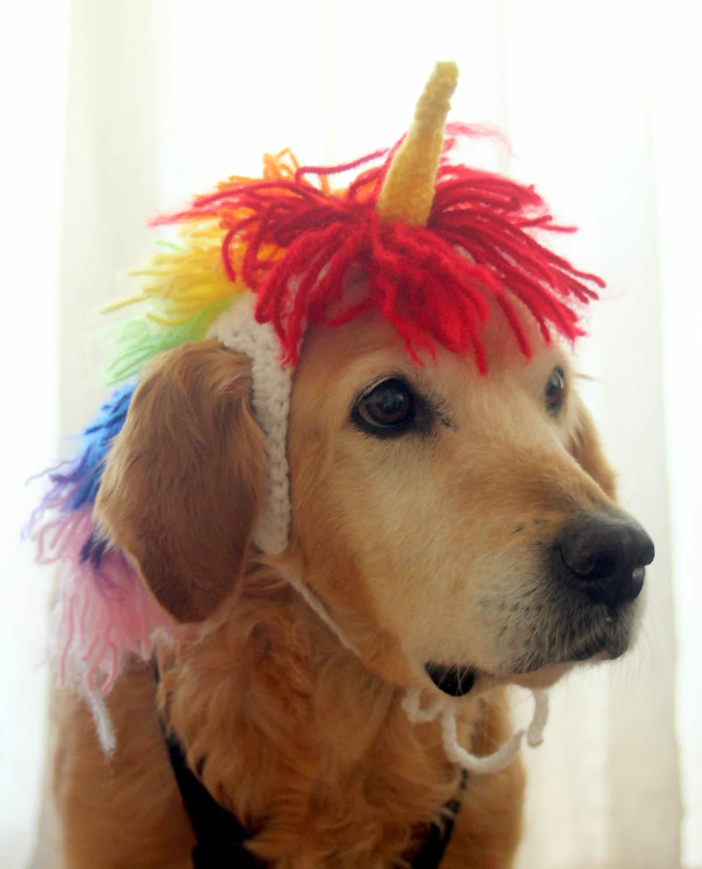 43e020e42f3 Trick-or-Treat Yo  Pet  20 Fantastic Dog   Cat Costumes From Etsy ...