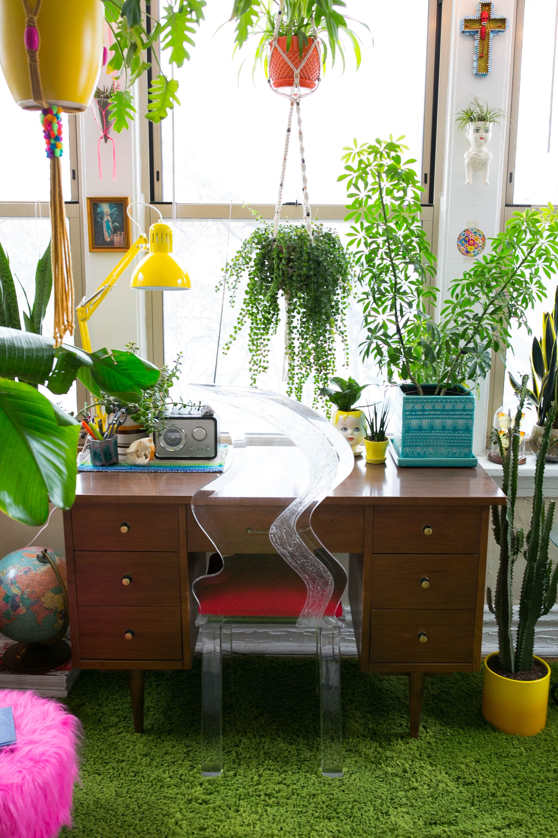 Hanging Plants - Best Indoor Types, Ideas | Apartment Therapy