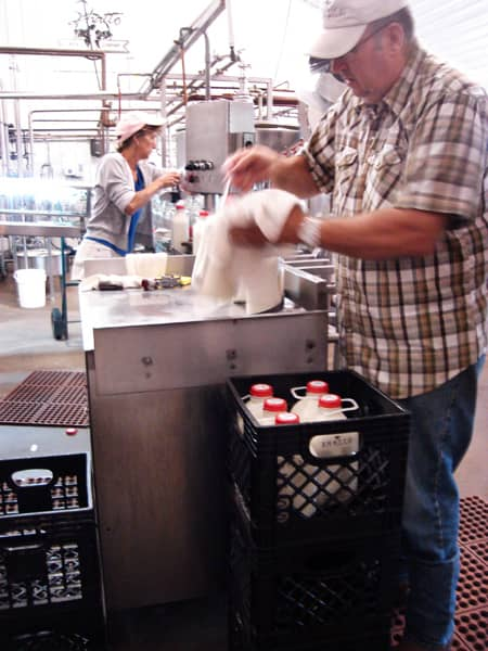 Where Does Milk Come From? A Tour of Shatto Dairy in Kansas City: gallery image 8