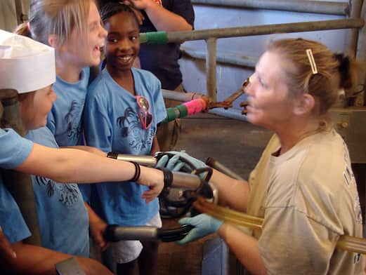 Where Does Milk Come From? A Tour of Shatto Dairy in Kansas City: gallery image 13