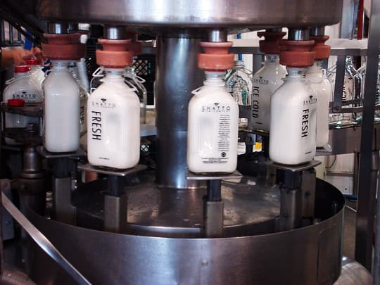 Where Does Milk Come From? A Tour of Shatto Dairy in Kansas City: gallery image 6