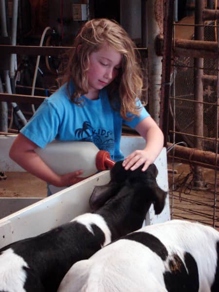 Where Does Milk Come From? A Tour of Shatto Dairy in Kansas City: gallery image 27