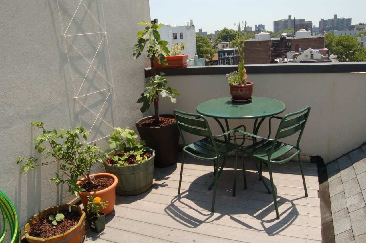 My Great Outdoors: Maria's Rooftop Kitchen Garden: gallery image 2