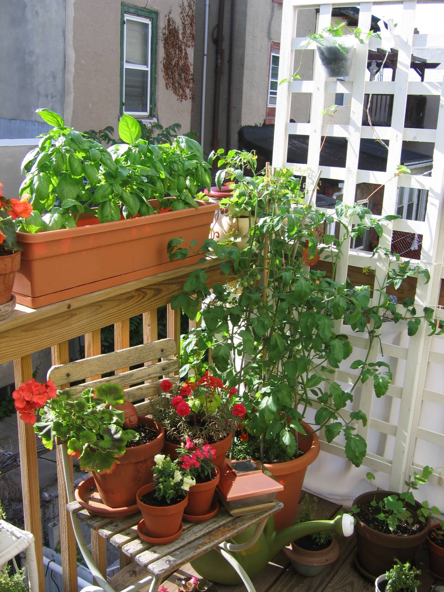 My Great Outdoors: Casi's Lush Garden and Dinner Deck: gallery image 5