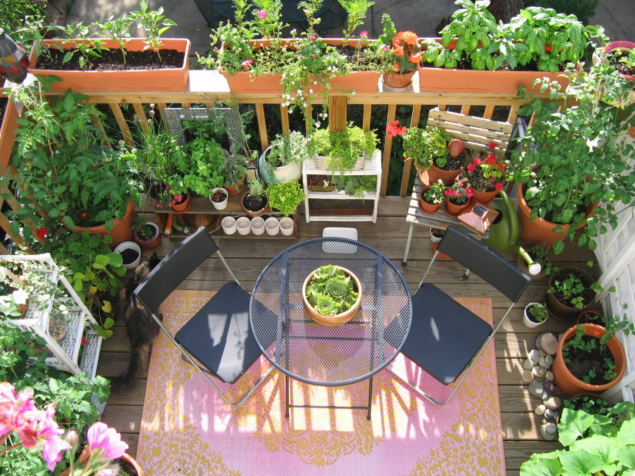 My Great Outdoors: Casi's Lush Garden and Dinner Deck: gallery image 1