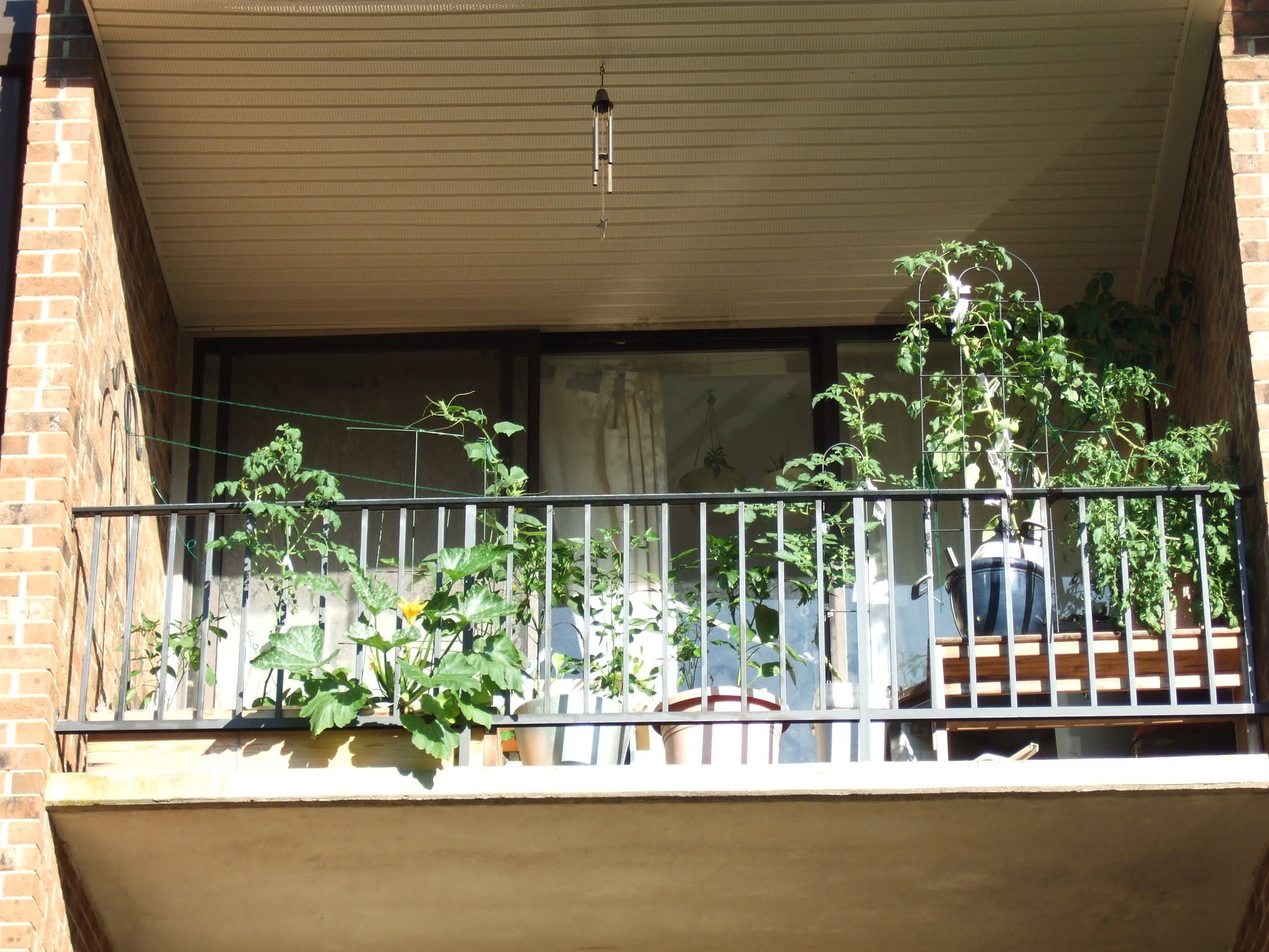 My Great Outdoors: Melissa's Garden Challenge: gallery image 1