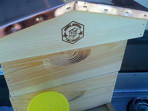 Her Majesty's Secret BeekeeperSan Francisco: gallery image 6