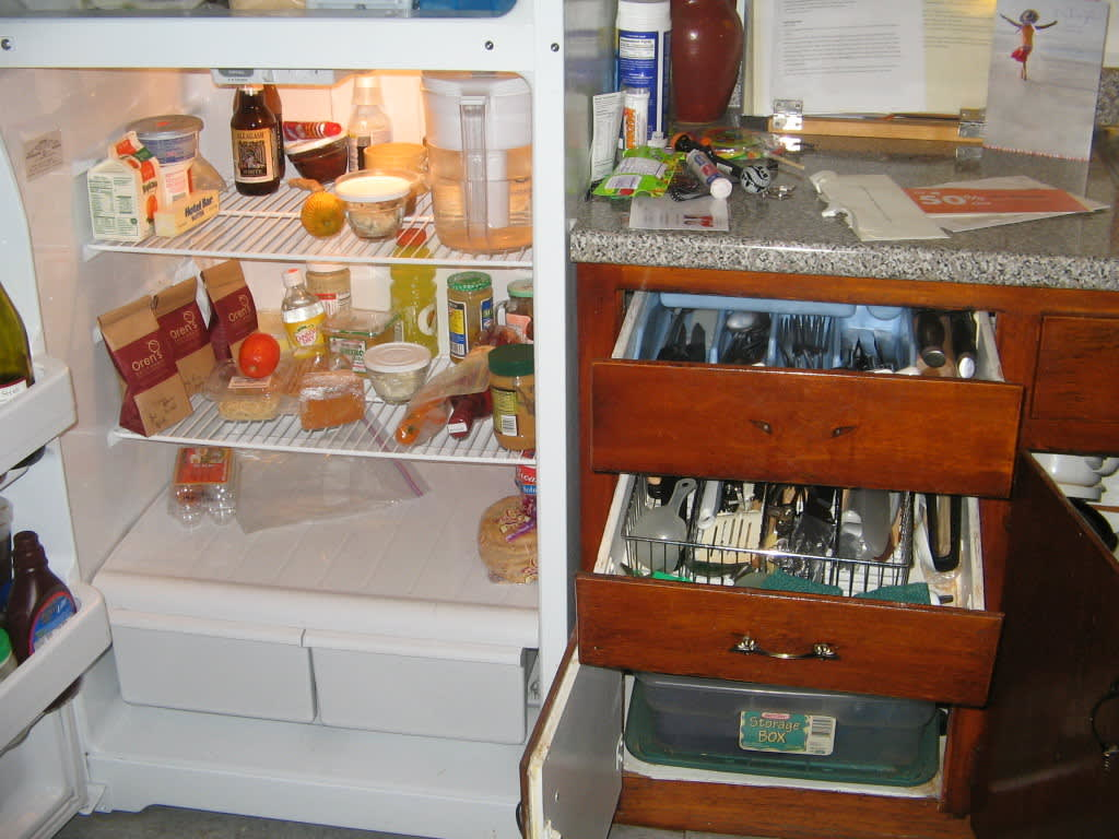 What Foods Are Always In Your Fridge? The Fall 2009 Kitchen Cure: gallery image 5