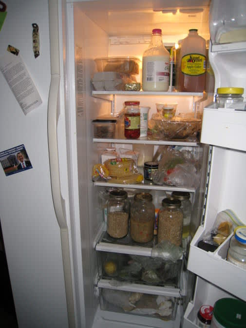 What Foods Are Always In Your Fridge? The Fall 2009 Kitchen Cure: gallery image 2