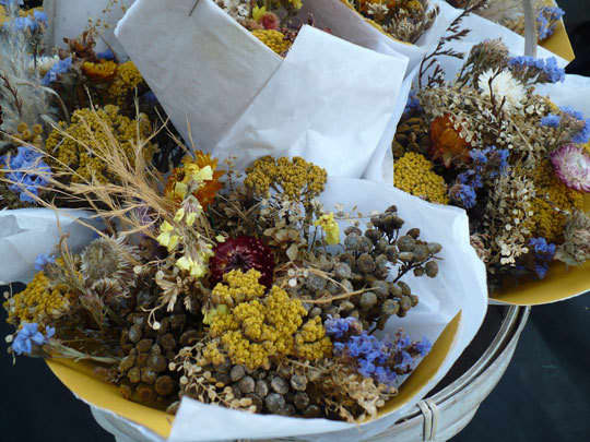 Midwest Harvest at the Farmers' MarketDane County, Wisconsin: gallery image 3