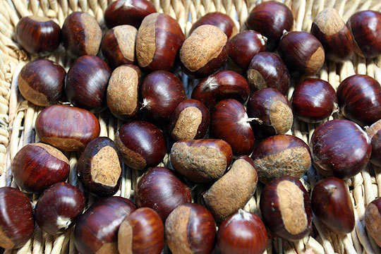 Tip: How To Roast and Peel Chestnuts: gallery image 1