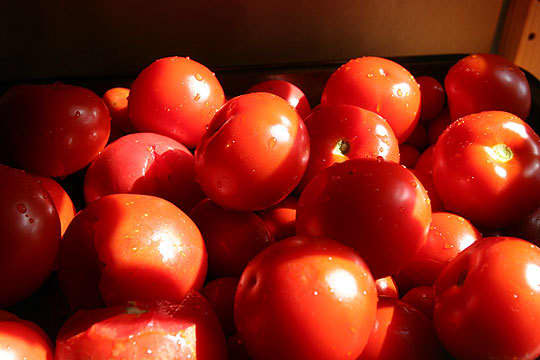 Home Canning Project: Roasted and Canned Tomatoes: gallery image 2