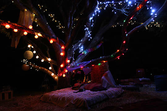 Apple Cider Campout In Sonoma: gallery image 5