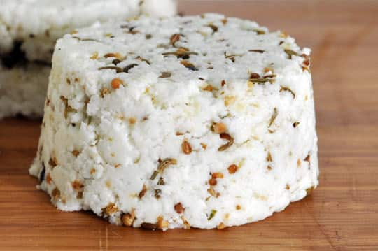 DIY Kit: Make Your Own Goat Cheese!: gallery image 9