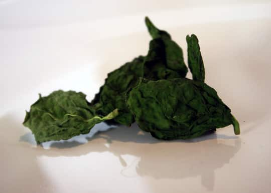 How To Dry Herbs In The Microwave: gallery image 1