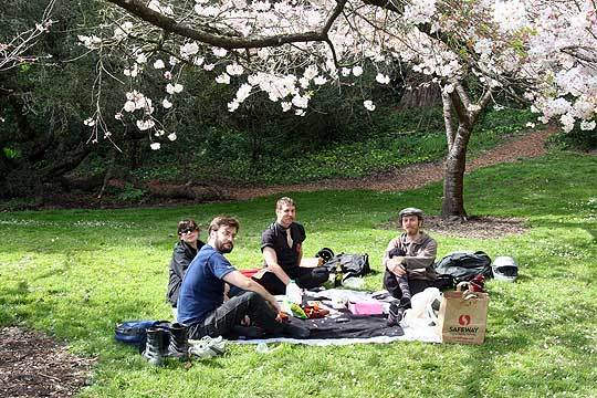 Celebrate Spring With A Hanami Picnic: gallery image 5