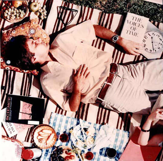 Picnic Inspiration from Charles and Ray Eames: gallery image 1