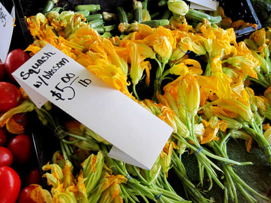 Farmer's Market Report: Summer Squash and Blossoms: gallery image 1
