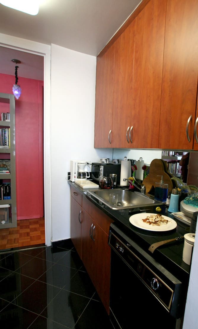 Kitchen Tour: Gillian's Stealthy but Colorful Kitchen: gallery image 3