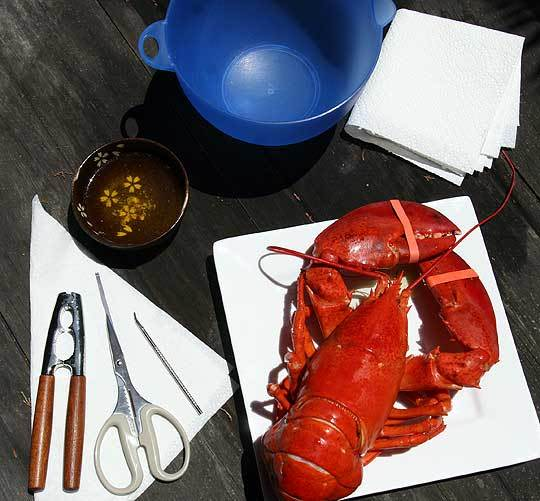 How To Crack And Eat A Whole Lobster: gallery image 1