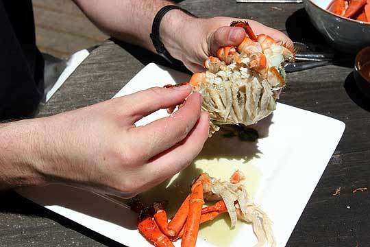 How To Crack And Eat A Whole Lobster: gallery image 6