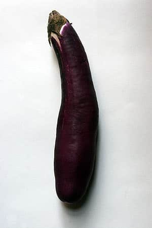 A Roundup Of Eggplant: gallery image 1