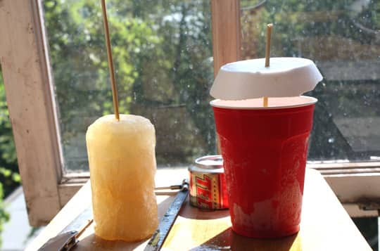 How To Make Beer Popsicles At Home: gallery image 11