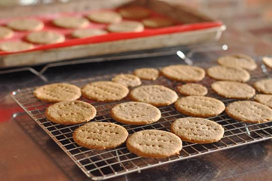 How To Make Mallomar Cookies at Home: gallery image 3