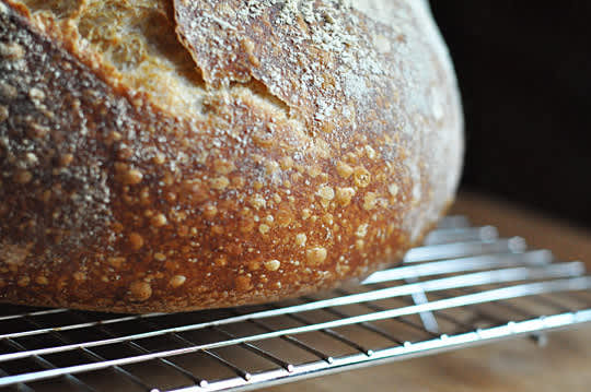 Tartine Bread: Basic Country Bread Recipe Reviews: gallery image 3