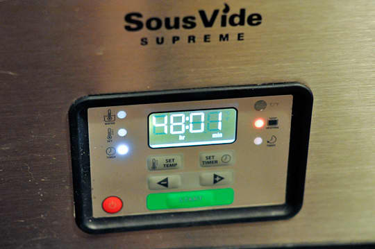 Product Review: SousVide Supreme: gallery image 3