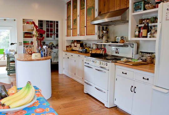 Kitchen Tour: Joan & Jim's Jolly Kitchen: gallery image 4