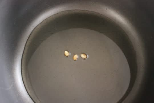How to Pop Popcorn on the Stove: gallery image 3
