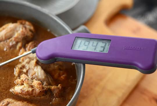 A $93 Thermometer? Why the Thermapen Is Worth It