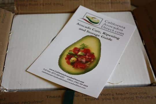 Avocados by Mail! California Avocados Direct Delivers: gallery image 3