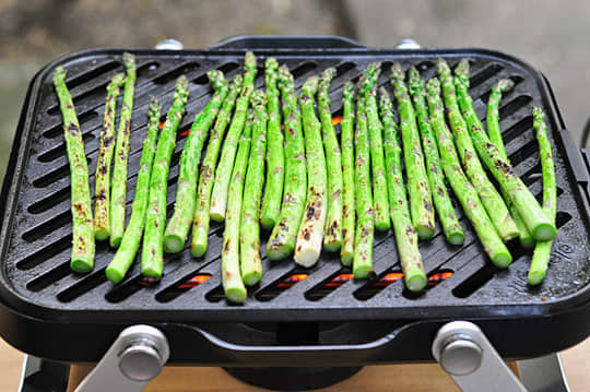 The Element Portable Grill by Fuego: A Smaller, Lighter Gas Grill for Apartment-Dwellers: gallery image 2
