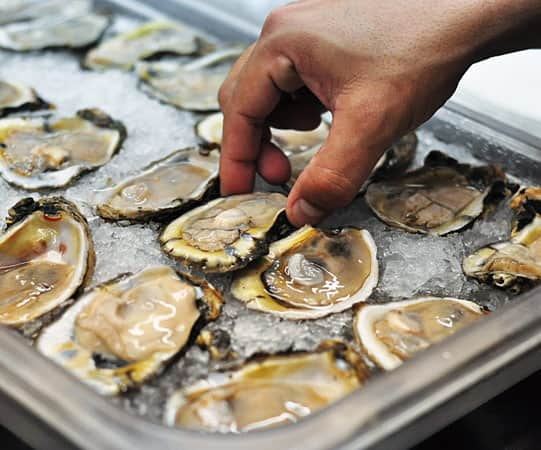Crack, Slurp, Repeat: How To Shuck an Oyster: gallery image 5