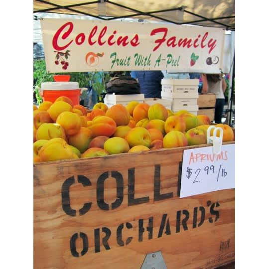Visiting the Ballard Farmers Market: gallery image 6