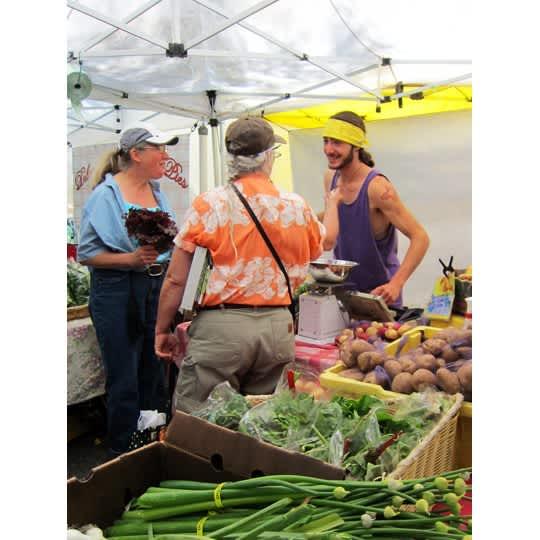 Visiting the Ballard Farmers Market: gallery image 11