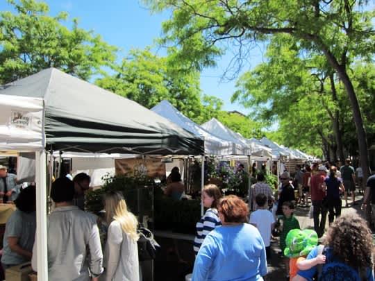 Visiting the Ballard Farmers Market: gallery image 2