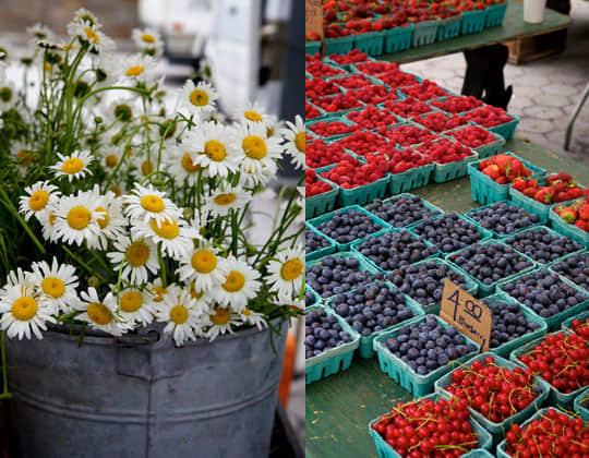 Expert Interview: Nicole Franzen, Food Photographer: gallery image 7