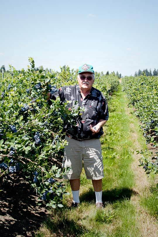 Oregon Fruit: Berry Farm & Cannery Tour: gallery image 4