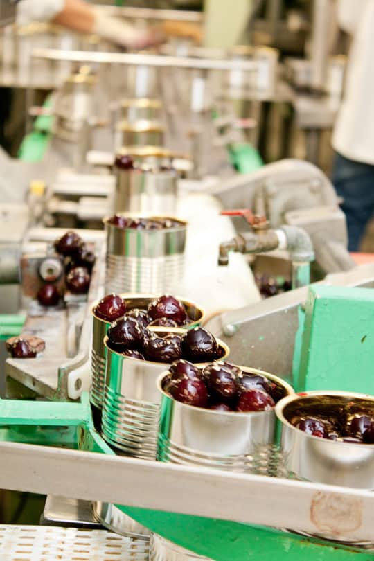 Oregon Fruit: Berry Farm & Cannery Tour: gallery image 13