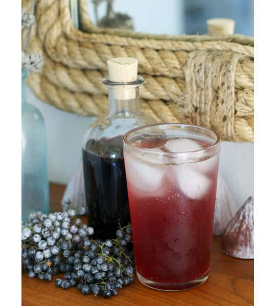 Drink Recipe: Elderberry Shrub: gallery image 9