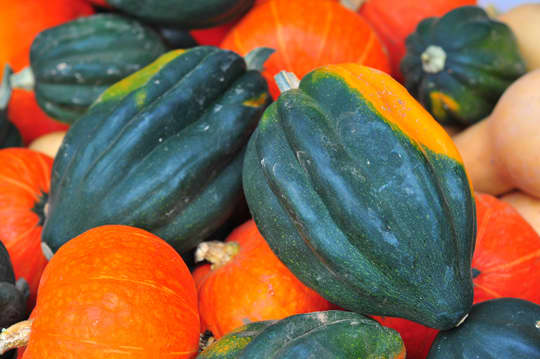 A Guide to Selecting the Best Produce: Vegetables: gallery image 38