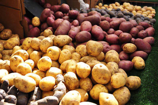 A Guide to Selecting the Best Produce: Vegetables: gallery image 27