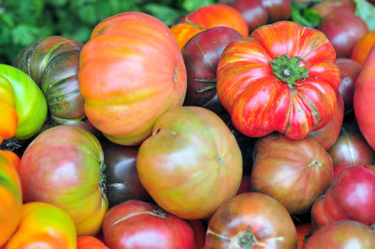 A Guide to Selecting the Best Produce: Vegetables: gallery image 36