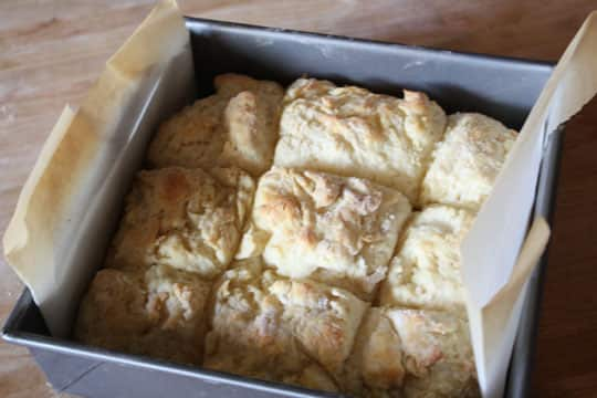 For the Bread Basket: 10 Best Rolls, Buns, and Biscuits: gallery image 10