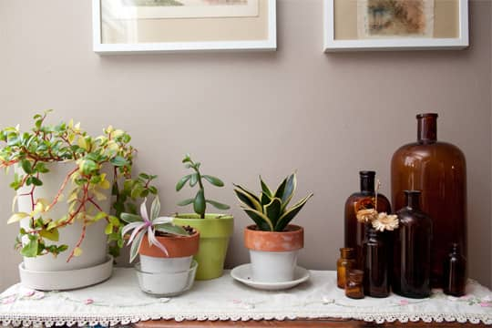 Clara's Sweet & Stylish Rental Kitchen: gallery image 16