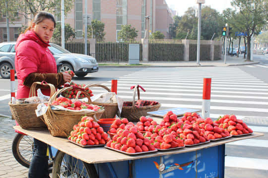 Soup Dumplings & Peking Duck: Snapshots From China: gallery image 7