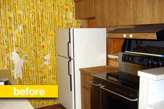 Alison & Kevin's Floor-to-Ceiling Kitchen Remodel in Seattle: gallery image 3